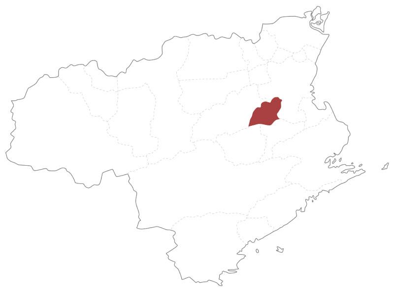 徳島県佐那河内村